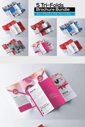 5 Corporate Tri Fold Bundle
