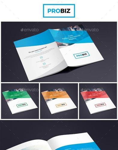 ProBiz Business and Corporate Magazine