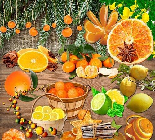 Citrus fruit on a transparent background
